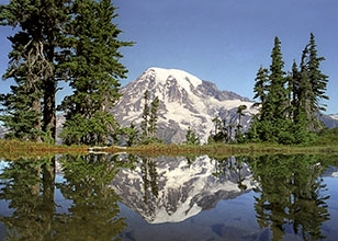 Experience the water and mountain majesty of an Alaska cruise capped by mt Rainer and mt St. Helens visits.