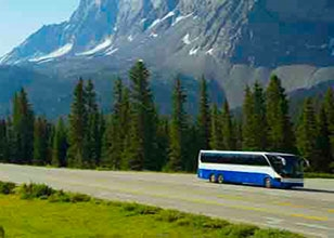 Join All Aboard Travel for exciting motor coach tours to great destinations in 2017!